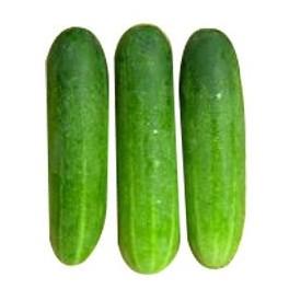 Green Kheera